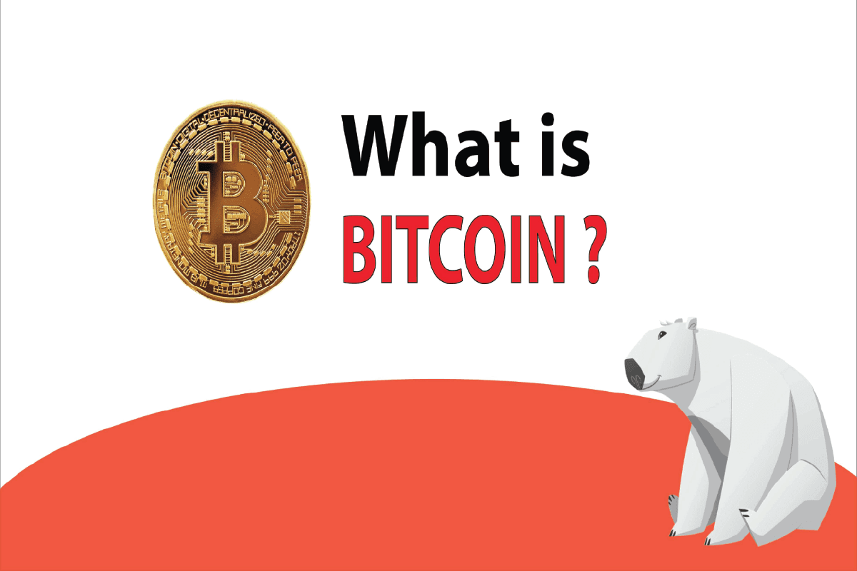 What Is BITCOIN? Introduction to Bitcoin