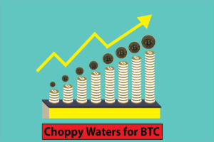 Expectation of Choppy Waters for BTC in 2019