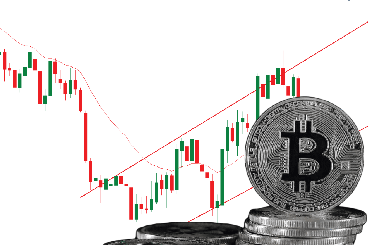 2019's Best-Performing Asset is Bitcoin