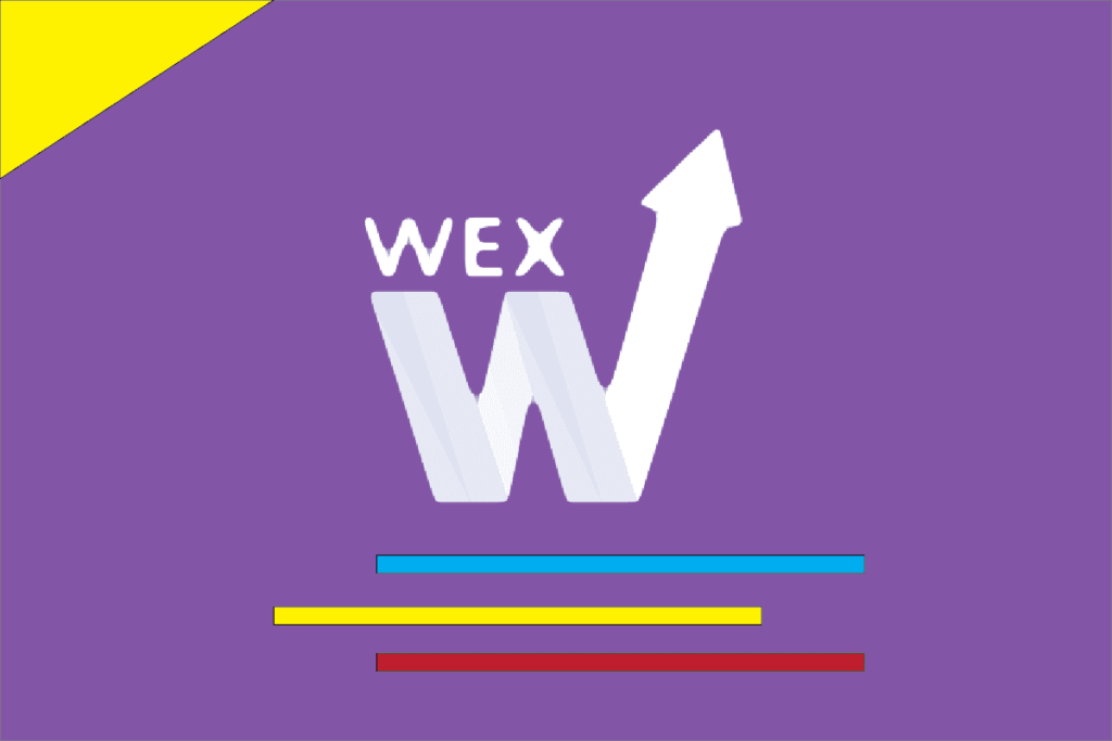 WEX allegedly Committed Law Breaking