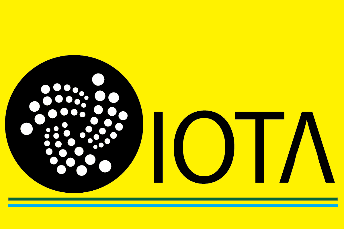 Fixing a software bug by IOTA Foundation