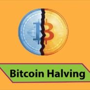 Will Bitcoin halving lead Miners to Sell for Double?