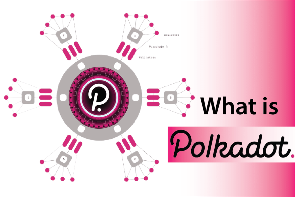 What is Polkadot? Everything You Need to Know about Polkadot before Investing.