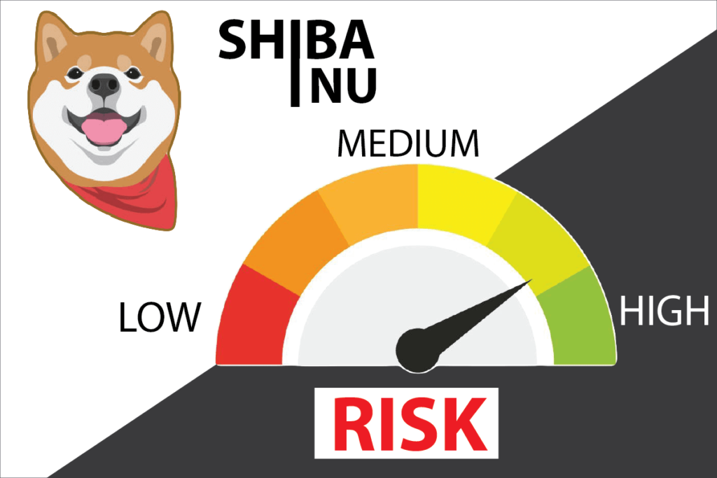 Why your shiba inu investment could be very risky?